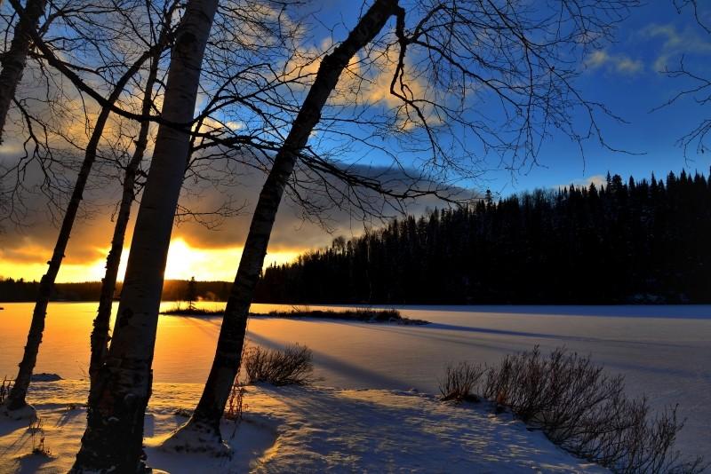 A winter landscape.