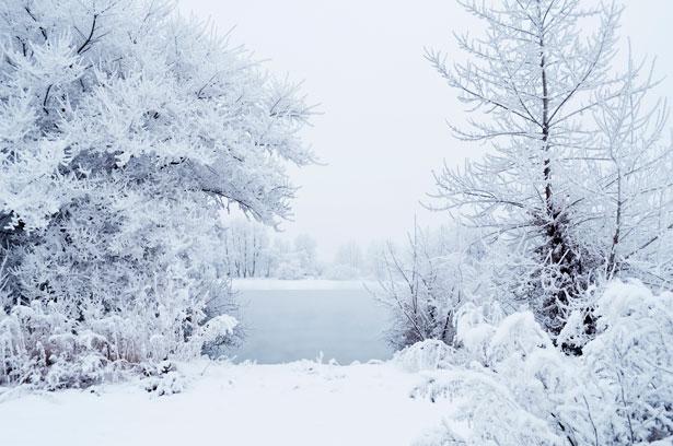 Optical white snow.